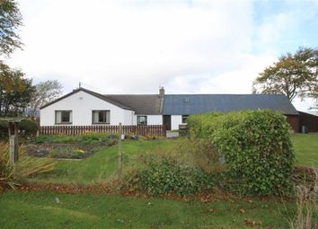 Thumbnail 3 bed detached bungalow for sale in Fern Cottage, Cullicudden, Culbokie