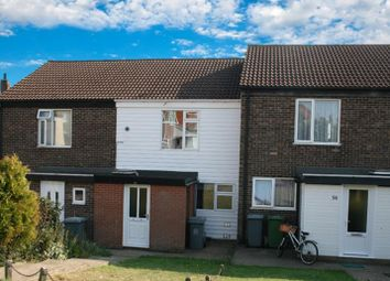 Thumbnail 3 bed property to rent in Cedar Avenue, Spixworth, Norwich