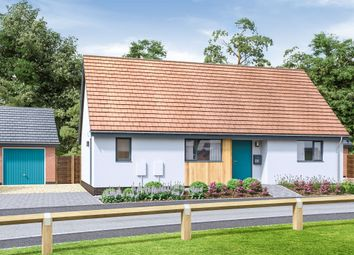 Thumbnail 2 bed detached bungalow for sale in Watton Green, Watton, Thetford