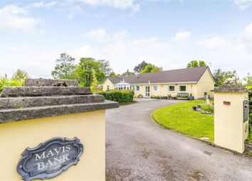 Thumbnail 4 bed bungalow for sale in Pettymarsh Lane, St Briavels, Lydney