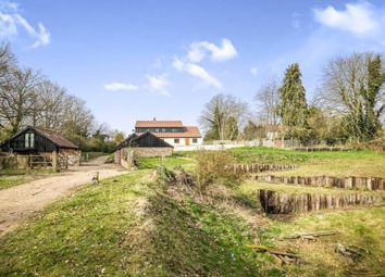 Thumbnail 4 bed equestrian property for sale in Broome, Bungay, Norfolk