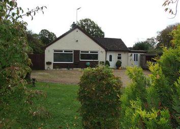 Thumbnail 4 bed bungalow for sale in Hackwood, Robertsbridge, East Sussex