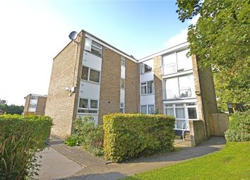 Thumbnail 2 bed flat to rent in Dunwood Court, Boyn Valley Road, Maidenhead, Berkshire