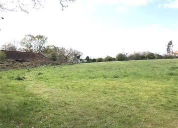 Thumbnail Property to rent in Penny Royal Road, Danbury, Chelmsford