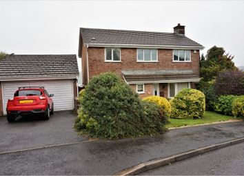 Thumbnail 3 bed detached house for sale in Squirrel Walk, Fforest, Pontarddulais