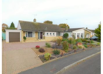 Thumbnail 2 bed detached bungalow for sale in Chestnut Springs - Lydiard Millicent, Swindon