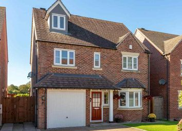 Thumbnail 5 bed detached house for sale in College Gardens, Shrewsbury