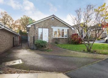 Thumbnail 3 bed bungalow for sale in Fern Way, Eckington, Sheffield, Derbyshire