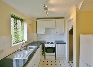 Thumbnail 2 bed terraced house to rent in Bluehaven Walk, Hook