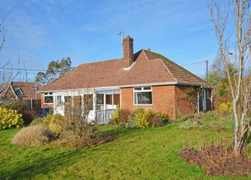 Thumbnail 2 bed detached bungalow for sale in Newton Valence, Alton, Hampshire