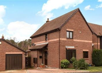 Thumbnail 3 bed detached house for sale in Merryman Drive, Crowthorne, Berkshire