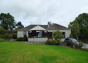 Thumbnail 2 bed detached bungalow for sale in Victoria Street, Kirkpatrick Durham, Castle Douglas