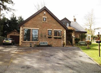 Thumbnail 4 bedroom detached house to rent in Fulbeck, Morpeth