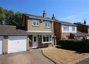 Thumbnail 3 bed detached house for sale in Douglas Road, Tapton, Chesterfield