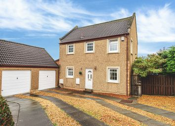 Thumbnail 4 bed link-detached house for sale in Miller Place, Airth
