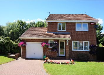 Thumbnail 3 bed detached house for sale in Hawthorn Drive, Jarrow