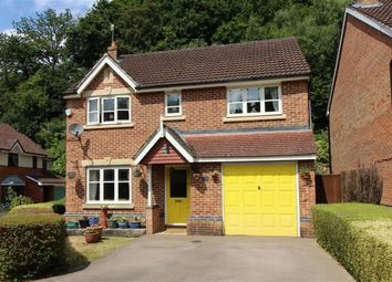 Thumbnail 4 bed detached house for sale in Tinmans Green, Redbrook, Monmouth