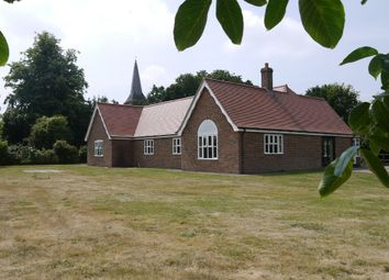 Thumbnail 4 bed detached bungalow to rent in Great Henny, Sudbury, Suffolk
