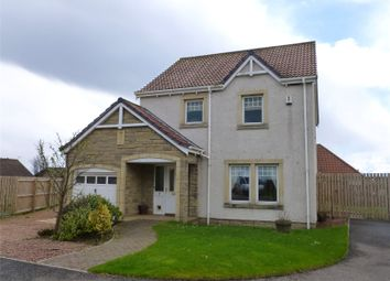 Thumbnail 3 bed detached house to rent in Taeping Close, Cellardyke, Anstruther, Fife
