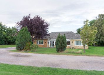 Thumbnail 4 bed detached bungalow for sale in New Hammond Beck Road, Wyberton Fen, Boston