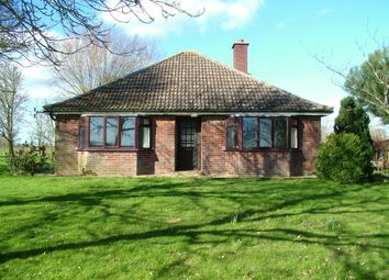 Thumbnail Detached bungalow for sale in Great Moulton, Norwich