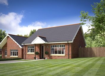 Thumbnail 2 bed bungalow for sale in Eureka Lodge, Swadlincote