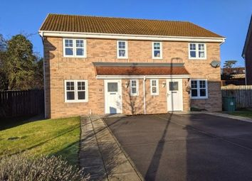 3 bed semi-detached house to rent in Babbage Gardens, Stockton-On-Tees TS19