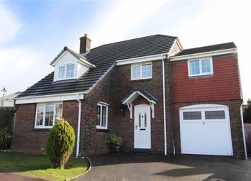 Thumbnail 5 bed detached house for sale in Trewyn Park, Holsworthy