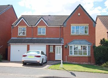 Thumbnail 1 bed detached house to rent in Peel Drive, Wilnecote, Tamworth, Staffordshire