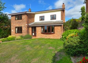Thumbnail 4 bed detached house for sale in Capel St.Mary, Ipswich, Suffolk