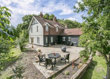 Thumbnail 3 bed equestrian property for sale in Junction Road, Bodiam, East Sussex