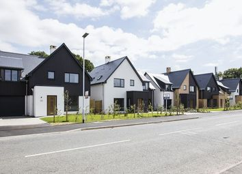 Thumbnail 4 bed detached house for sale in Samsons Road, Brightlingsea, Colchester