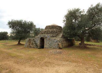 Thumbnail Land for sale in Contrada San Nicola, Carovigno, Brindisi, Puglia, Italy