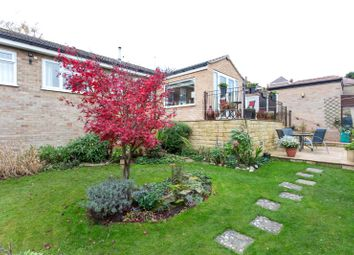 Thumbnail 3 bed detached bungalow for sale in Westover Road, Sandygate, Sheffield