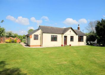 Thumbnail 3 bed detached bungalow for sale in Orchard End, Staunton, Gloucester