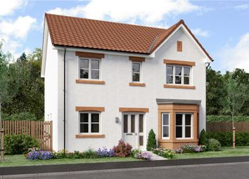 "Thumbnail 4 bed detached house for sale in ""Douglas"" at Dirleton, North Berwick"