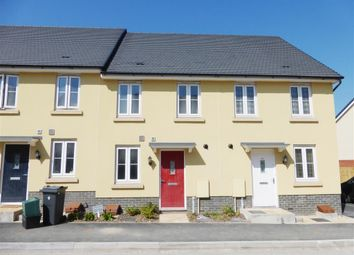 Thumbnail 2 bed property to rent in Baron Way, Hawthorn Rise, Newton Abbot