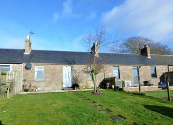 Thumbnail 2 bed cottage for sale in 4 Balruddery Cottages, Invergowrie