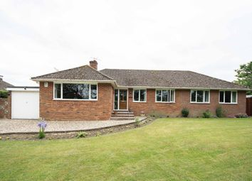 Thumbnail 4 bed bungalow for sale in Knights Lane, Ball Hill, Newbury