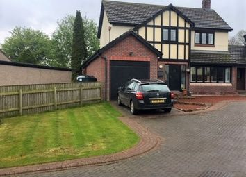 Thumbnail 4 bed link-detached house for sale in Tallows Whins, Lazonby