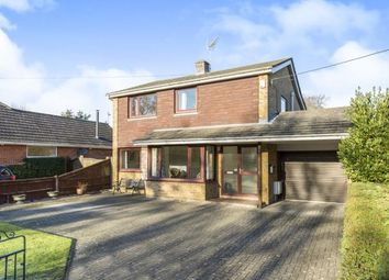 Thumbnail 4 bed detached house for sale in Cadnam, Southampton, Hampshire