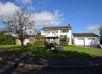 Thumbnail 4 bedroom detached house for sale in Yr Efail, Treoes, Bridgend.