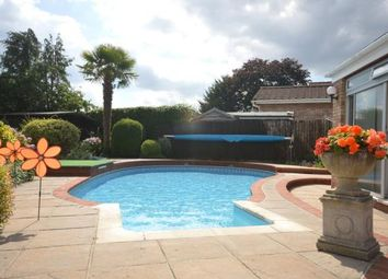 Thumbnail 4 bed detached bungalow for sale in The Pines, Exwick Hill, Exeter