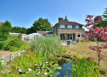 Gay Street, Pulborough RH20. 4 bed detached house