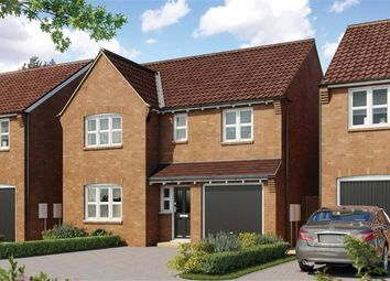 Thumbnail 4 bed detached house for sale in Earls View, Stoney Stanton