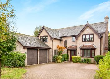 Thumbnail 4 bedroom detached house for sale in Clarke Close, Palgrave, Diss