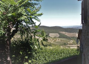 Thumbnail Farm for sale in 21082 Azienda Agricola Panzano, Greve In Chianti, Florence, Tuscany, Italy