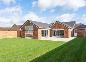Thumbnail 4 bed detached bungalow for sale in Ash Lane, Down Hatherley, Gloucestershire