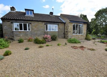 Thumbnail 2 bed detached bungalow for sale in Great Edstone, York