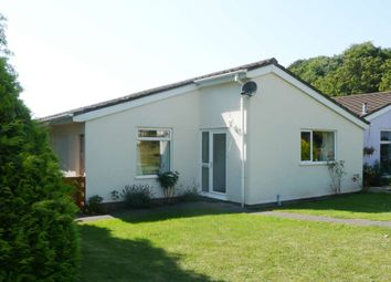 Thumbnail 1 bed detached bungalow to rent in Marldon Grove, Marldon, Paignton
